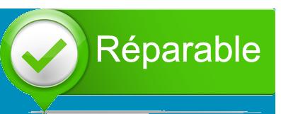repairable